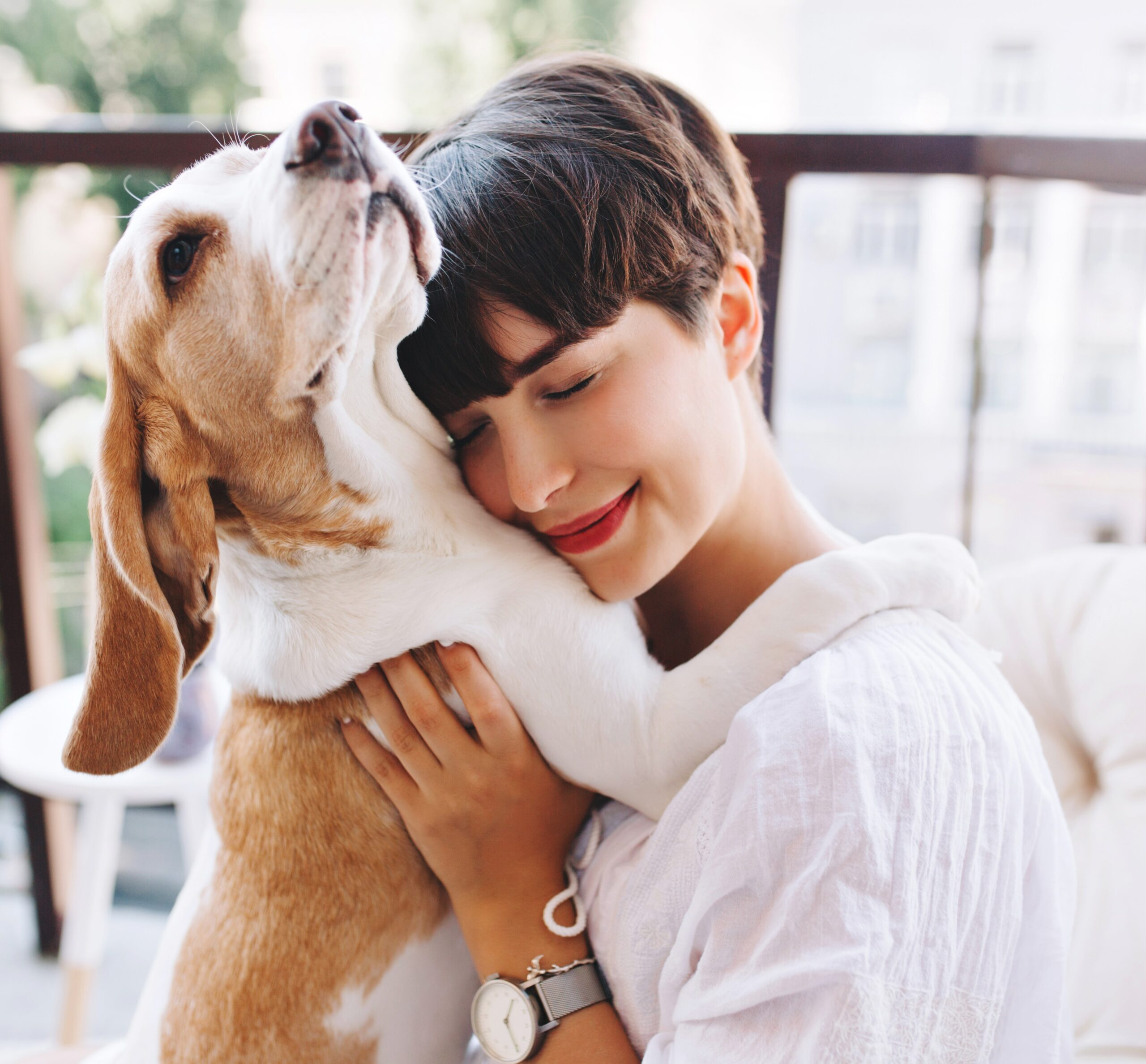 Pet Protection in Domestic Violence Situations